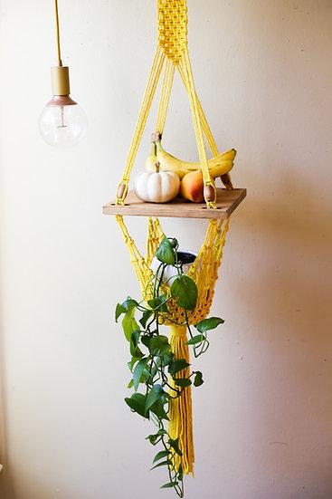 TEXAS SUN || Fruit Stand