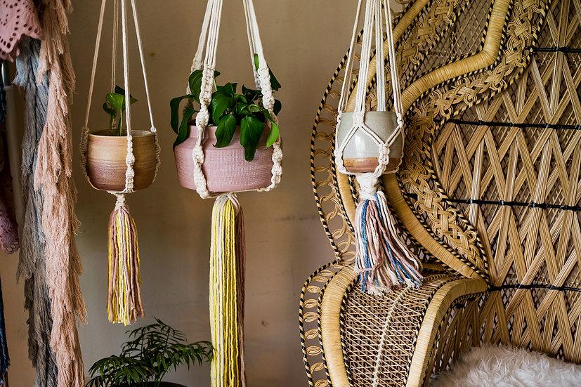 Firework Tails Plant Hangers