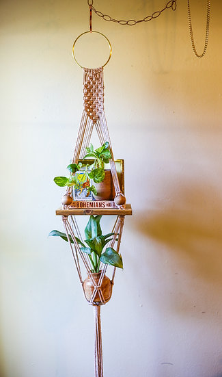 STELLA SHORT || Shelf Planter Combo