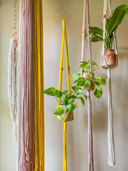 DIY KITS! Plant Hangers - Naturally Dyed!
