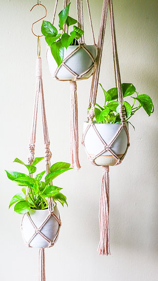 DIY KIT || Avocado Dyed Macrame Plant Hanger