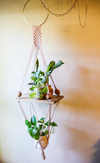 THE CARINA || Shelf + Planter Combo