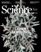 Spribille T, Tuovinen V, Resl P, Vanderpool D, Wolinski H, Aime MC, Schneider K, Stabentheiner E, Toome-Heller M, Thor G, Mayrhofer H, Johannesson H, McCutcheon JP. 2016. Basidiomycete yeasts in the cortex of ascomycete macrolichens. Science 353: 488–492.