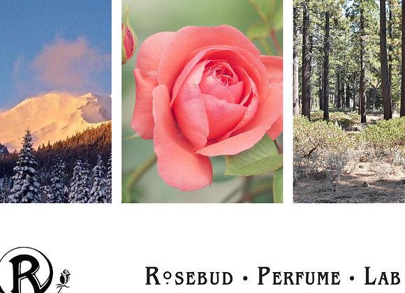 Perfume Sample set - Parfum Oil or Cologne