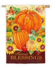 """Harvest Blessings Pumpkins 13S3508 Evergreen Suede HOUSE Flag 28"""" x 44"""""""
