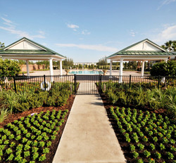 Waters Edge Townhomes