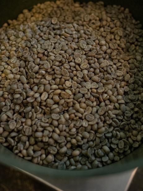 CoffeeCounty-Samp-52.jpg