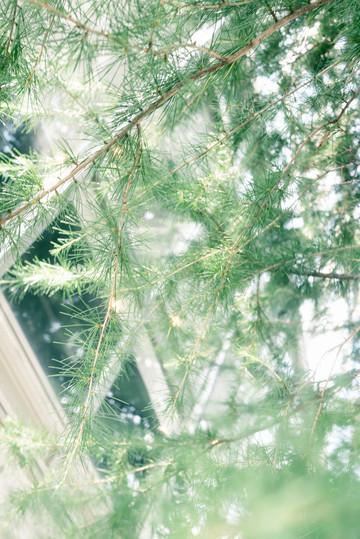hokuriku-15.jpg