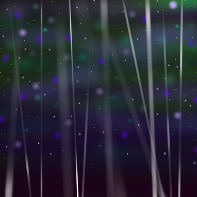 Starry Night 7_Bamboo Forest