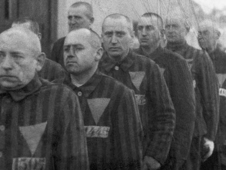 The Legacy of the 'Gay Holocaust'