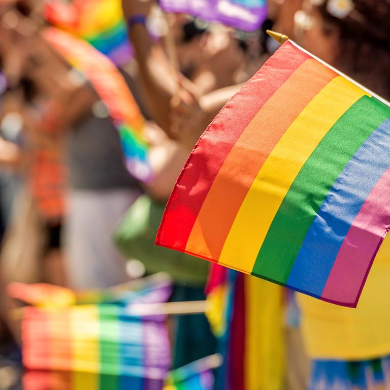 LGBTQA+ Workplace Awareness Training (via Zoom)