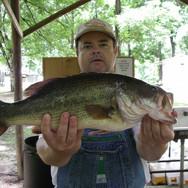 Big Bass | Tom McLemore