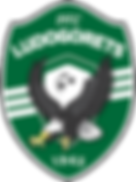 PFC_Ludogorets_1945_official_logo.png