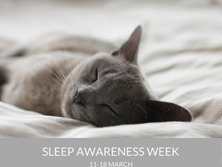 Sleep Deprivation - What You Can Do About It