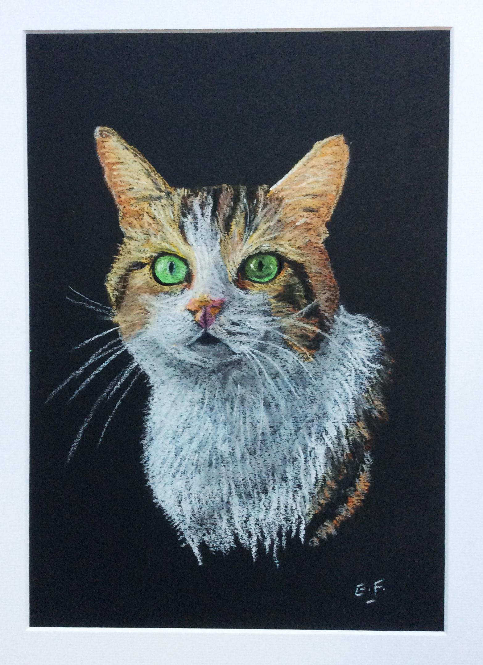 Tête de chat Pastel sec