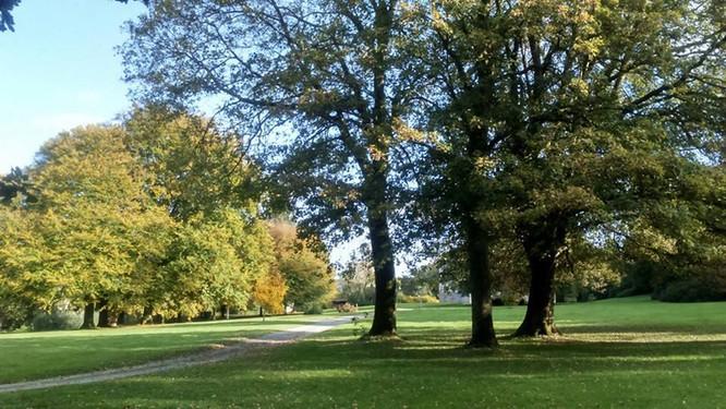 parc et jardin de brezal.jpg