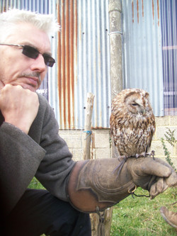 SussexFalconry 020