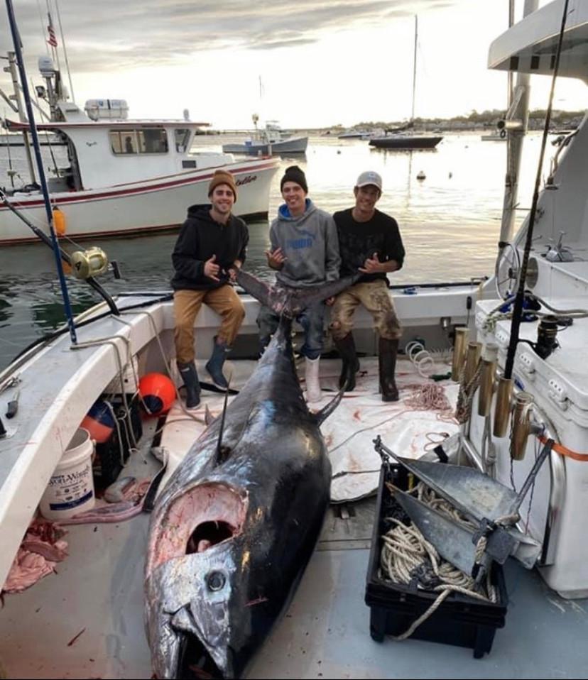 Dan Jr 124 inch 1000lbs tuna.jpg