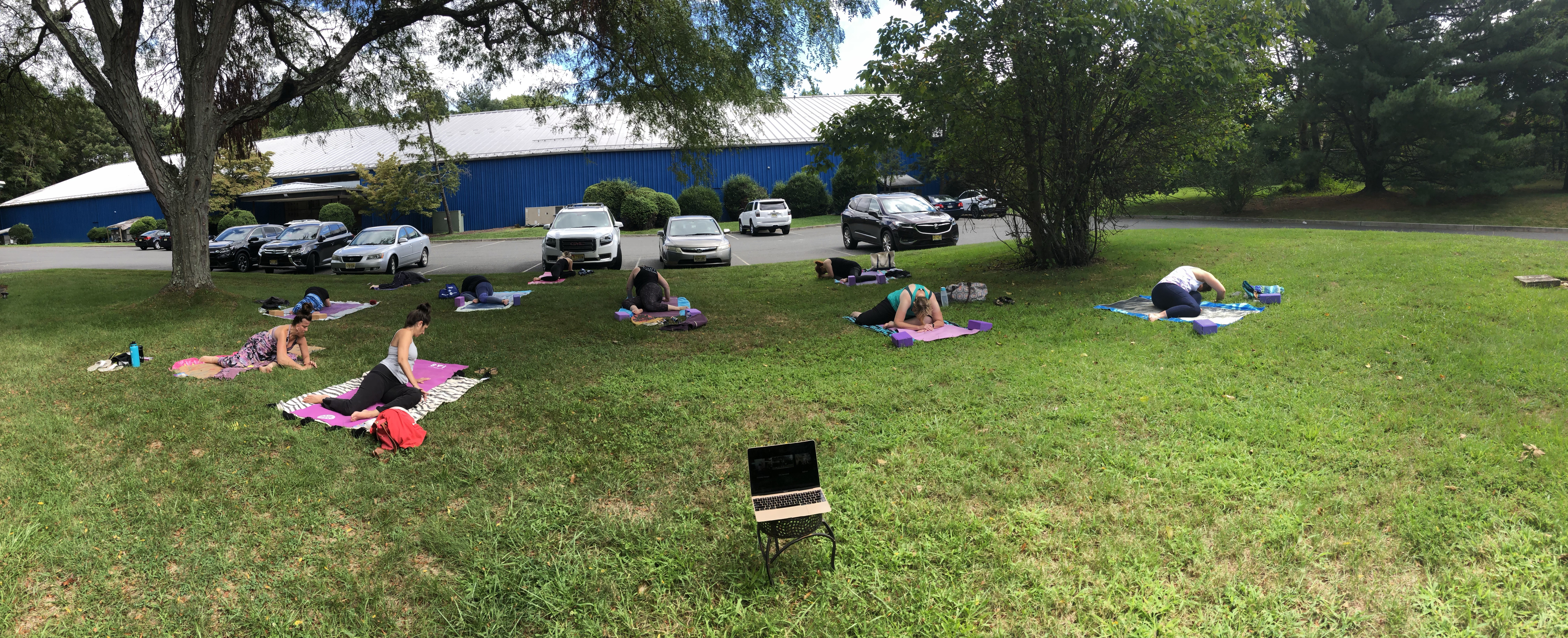 Yoga on the Lawn and Virtual