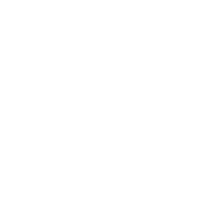 Group Coaching Icon