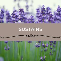 Sustains