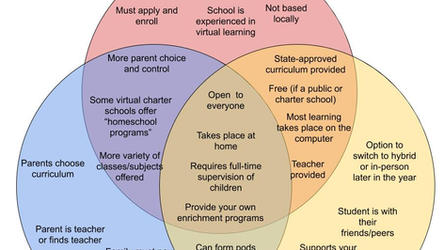 School Options: COVID Edition