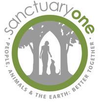 Board Secretary & Education Co-Chair, Sanctuary One
