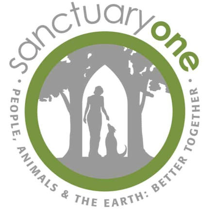 Board Secretary & Education Co-Chair, Sanctuary One