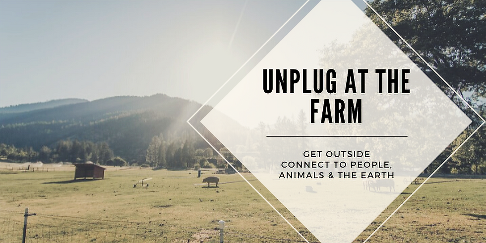 Unplug at the Farm