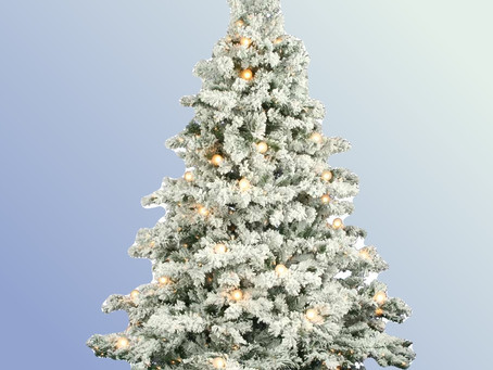 Flocked Alaskan Christmas Tree