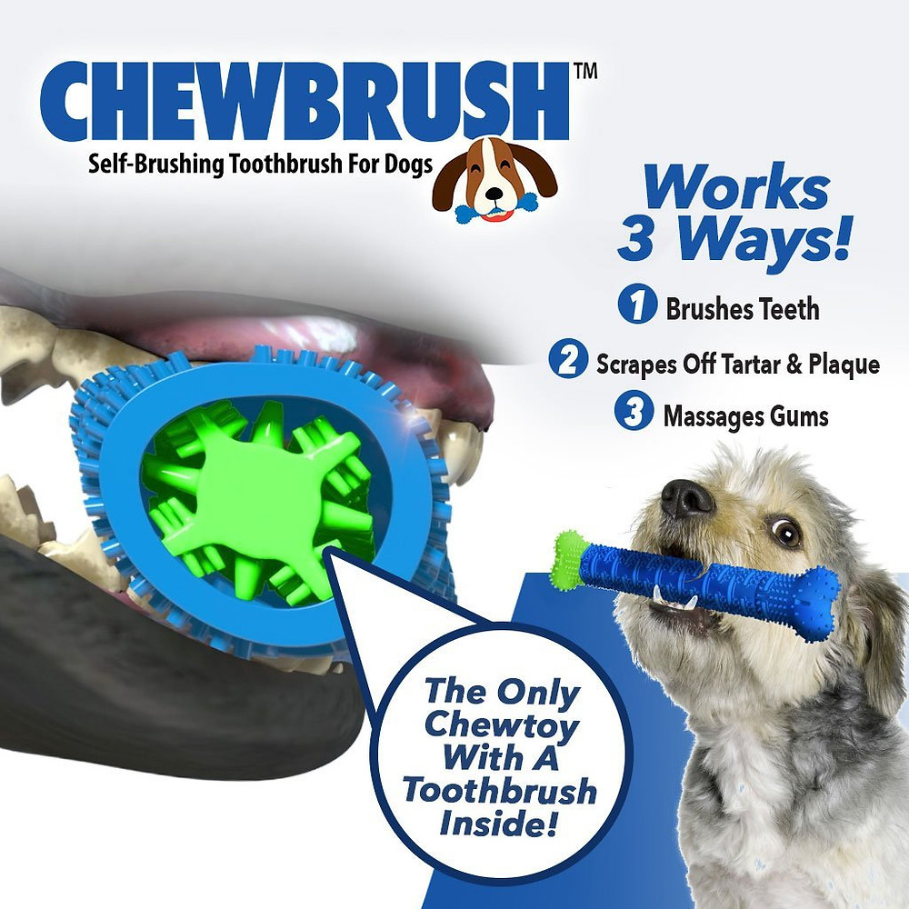 Dogs Brush Their Teeth While Chewing