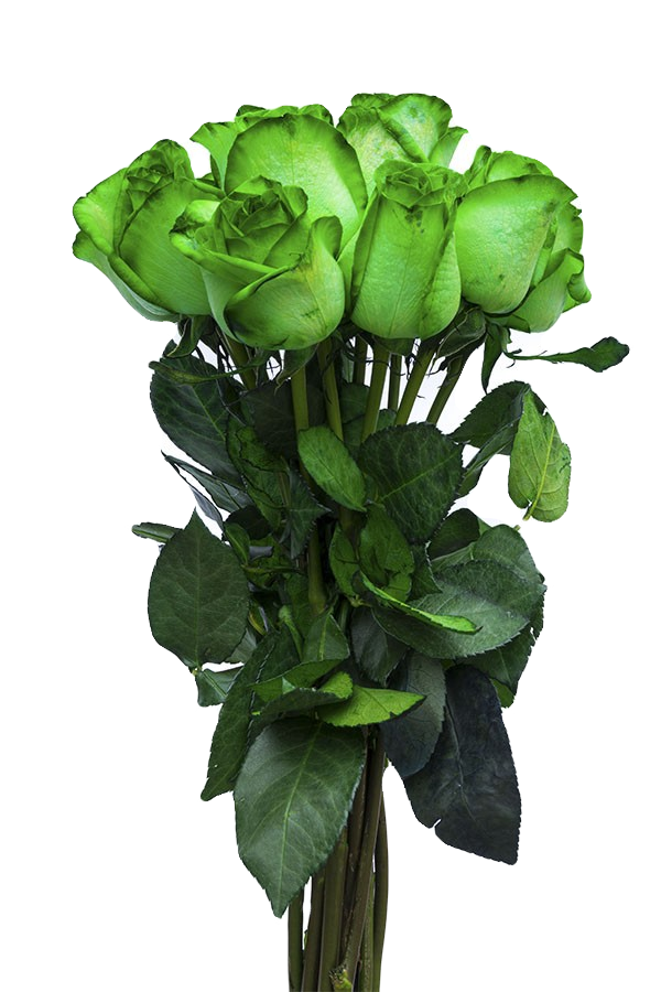 Discount Green Flowers