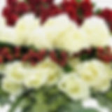07893B__Blooms_Holiday_Pack.jpg