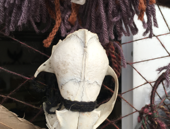 skull 12.png