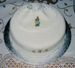 peter rabbit christening cake 2.jpg