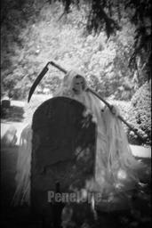 graveyard-4-wm.jpg