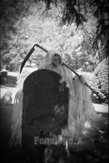 graveyard 4 wm.jpg
