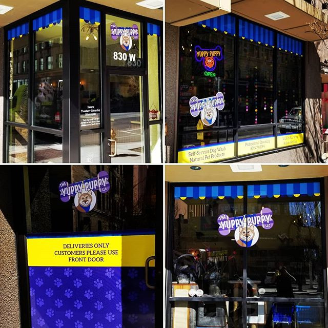 Window Decals or Perforated Window Film? Which is Best for Your Business.