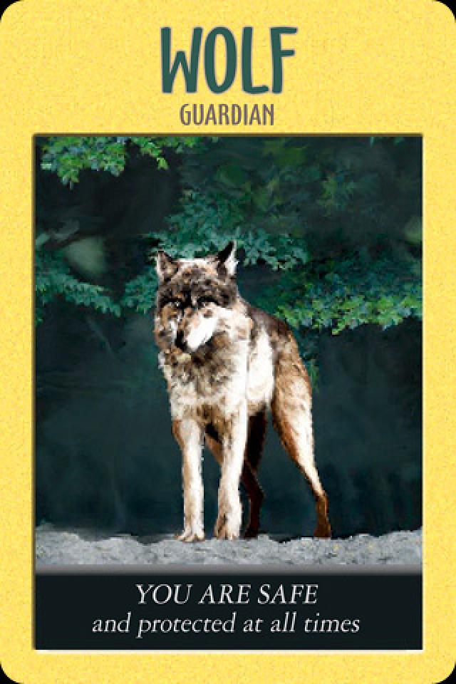 card reading for beginners, tarot basics, power animal oracle cards, spirit animal oracle cards, Steven d farmer