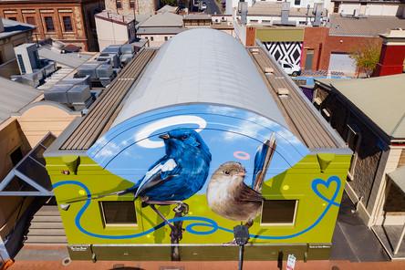 Wonderwalls Port Adelaide