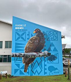 Save the Manumea Campaig - Apia, Samoa