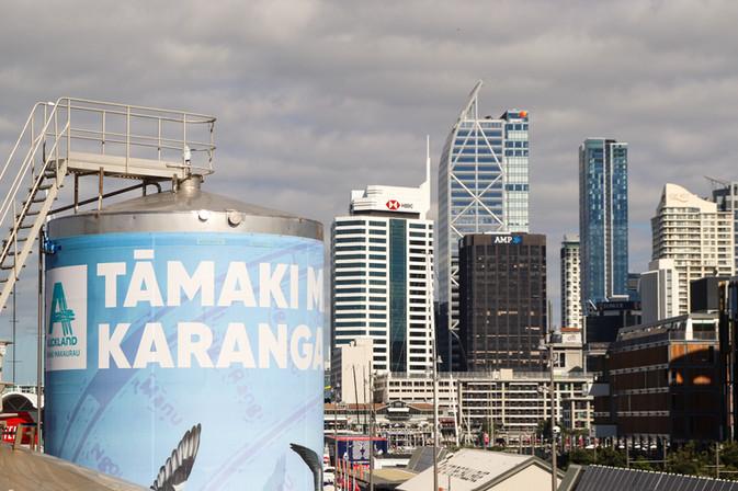 Tāmaki Skyline