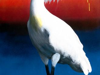 Manukau - Only Birds