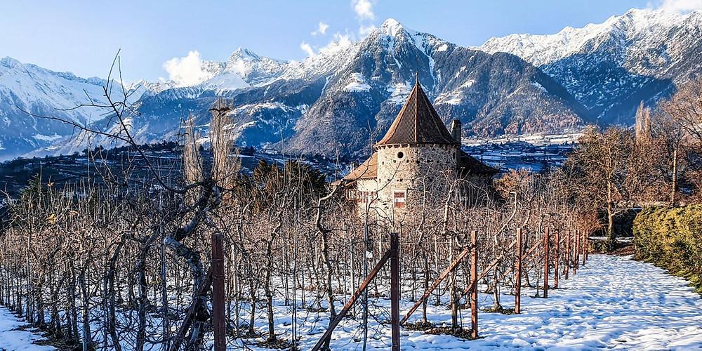Schloss Planta im Meraner Stadtviertel Obermais