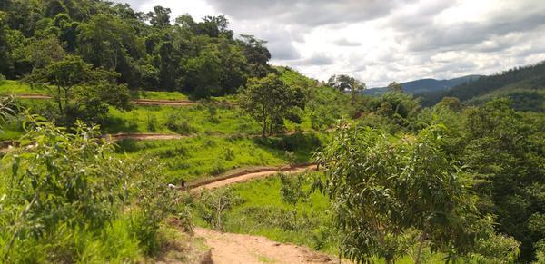 Visual da pista em Amparo (Divulgação)