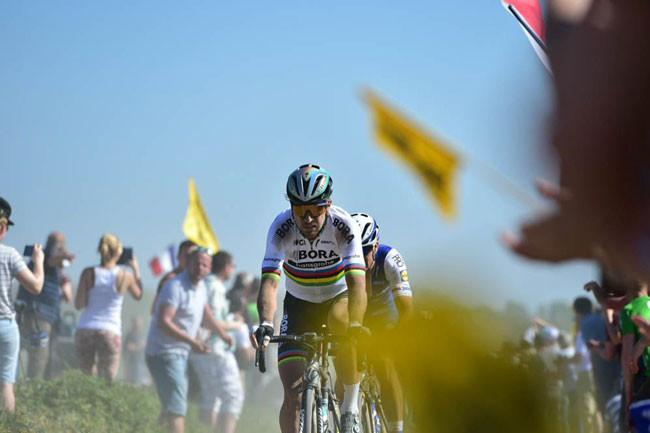 Sagan na Paris-Roubaix / Divulgação