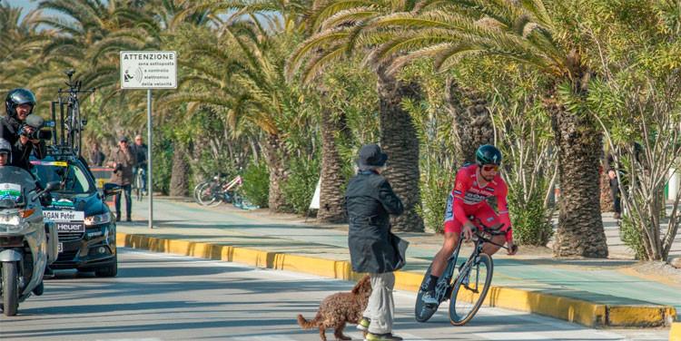 Sagan desviando do pedestre e seu cachorro / Massimo Fulgenzi