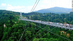 Подвесные мосты и системы