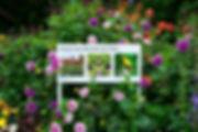 Signsofthetimes_Flowers.jpg