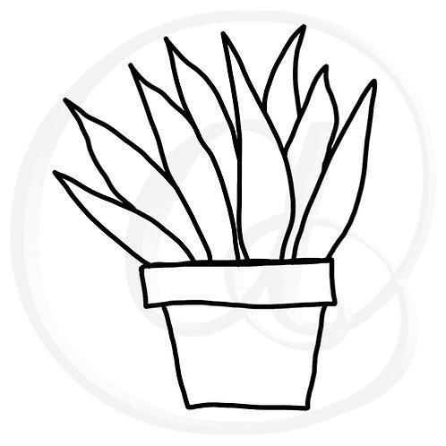Aloe Vera SVG cutting or drawing file